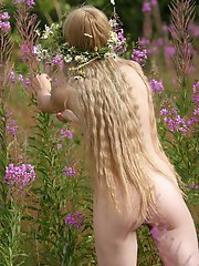 Fabulous attractive nude angel is wandering in the valley in a chamomile garland and is looking for some other flowers to decorate her garland.